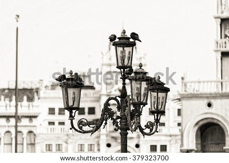 Piazza San Marco with streetlight with pigeons in Venice, Italy. Monochrome photo background of the venetian historic place. Black and white photo. - stock photo