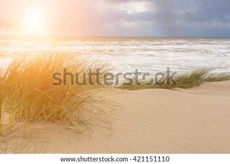 Pick elements of sun, cloudy sky, sea and sand dune - nature seascape background - stock photo