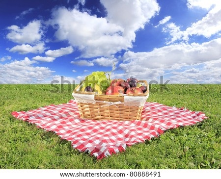 Picnic at meadow with perfect sky background - stock photo