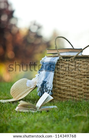 Picnic basket and straw hay laying on the grass. Also available in horizontal format. - stock photo