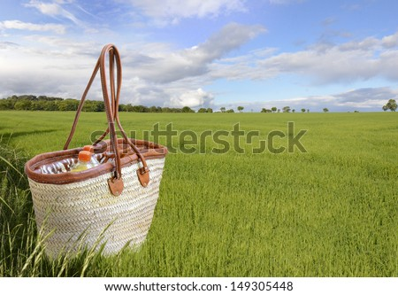 Picnic basket in a green meadow - stock photo