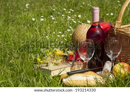 Picnic basket in the grass with tasty food and wine - stock photo