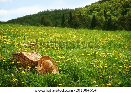 Picnic basket in the tall grass - stock photo