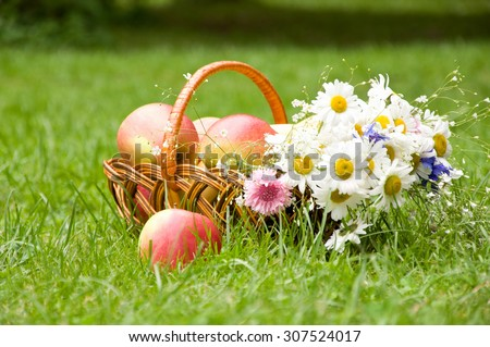 picnic basket with fruits on grass