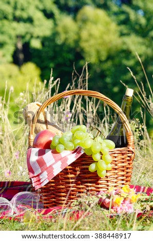 Picnic basket with fruits wine and bread