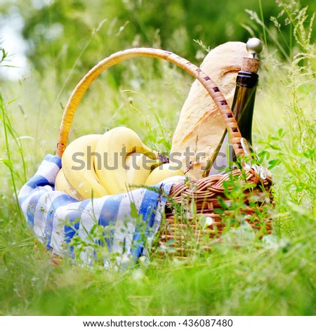 Picnic basket with fruits wine and bread on the grass