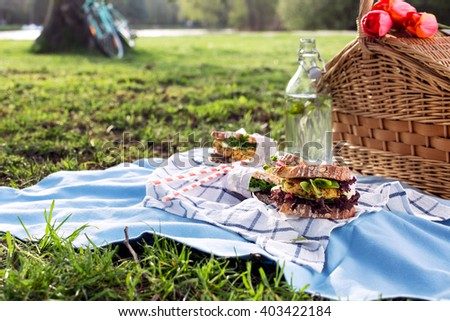 Picnic basket with healthy sandwiches on blue blanket in park, with copy space