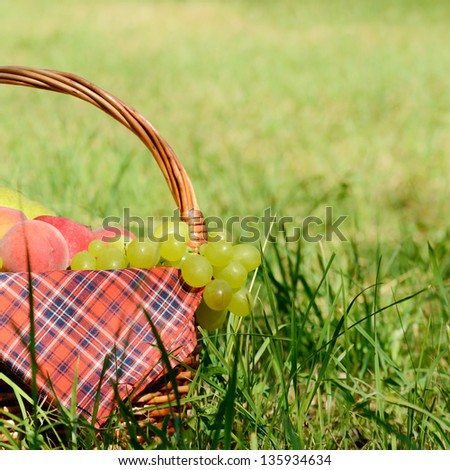 Picnic basket with red napkin fool of fruits - stock photo