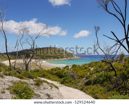 Picnic Bay in the Wilsons Promontory National Park, Victoria in Australia