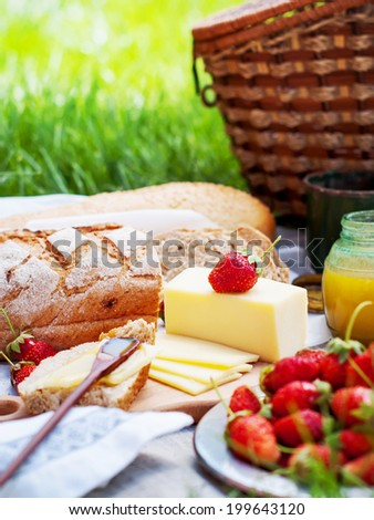 Picnic Food Fresh Strawberry, Bread, cheese, honey on green background - stock photo