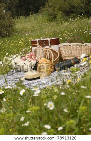 Picnic on meadow behind the daisy flowers - stock photo