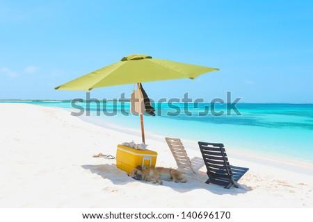 Picnic on the beach of archipelago Los Roques, Venezuela - stock photo