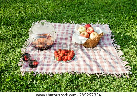 Picnic on the grass outdoors in park on sunny summer day. - stock photo