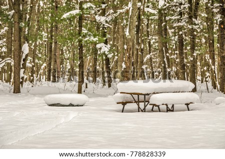 Picnic Table Fire Pit Buried Under Stock Photo Royalty Free - Picnic table michigan