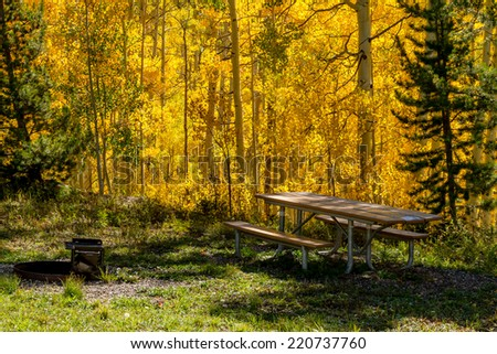 Picnic table and grill at picnic site in national forest filled with changing yellow Aspen trees on fall afternoon - stock photo