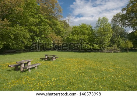 picnic table in blooming meadow, West Sussex, UK.