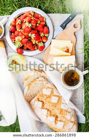 Picnic Tablecloth on Grass with Summer Food, Fresh Bread, Cheese, Honey, Strawberry,Tea. Sun effect - stock photo