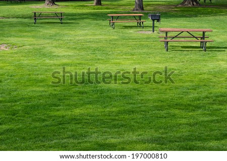 Picnic tables on green lawn in a park