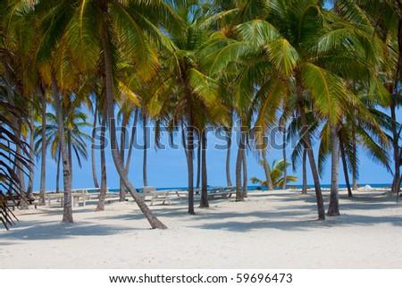 Picnic tables on Lighthouse Caye, Belize. - stock photo