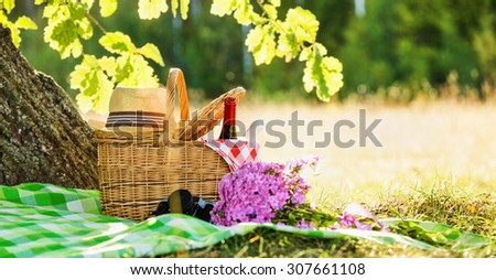 Picnic with red and white wine near oak - stock photo