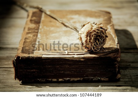picture of a dried rose lying on an antique book