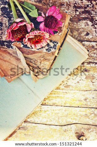 picture of a flowers lying on an antique book/ Flowers on vintage wood background with blank/romantic vintage background with dry rose and blank page - stock photo