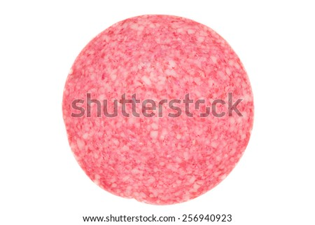 Picture of a single danish salami slice
