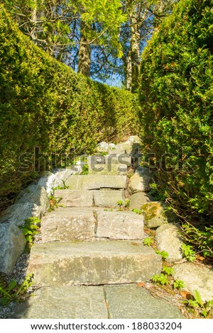 Picture of a stairway in stone, covered in hedges