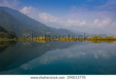 Picture of a Swan on Lake  - stock photo