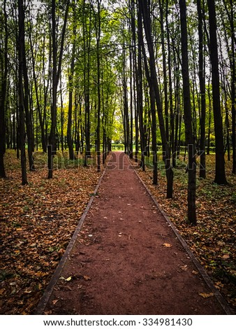 Picture of an autumn path in a park in Moscow, Russia