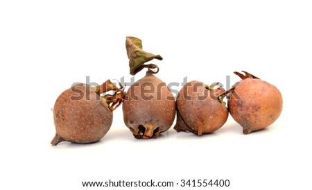 picture of an organic medlars on a white background