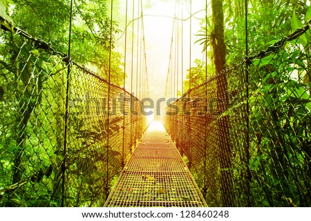 Picture of Arenal Hanging Bridges Ecological reserve, natural rainforest park, La Fortuna de San Carlos city, Costa Rica, Central America, footbridge in jungle, travel and tourism concept - stock photo