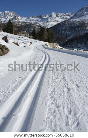 Picture of Cross-country trail (Gran Paradiso National Park, Piemonte Italy) - stock photo