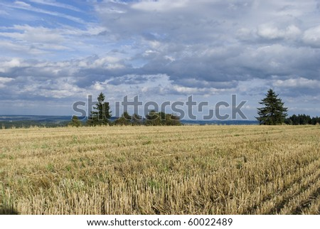 picture of czech landscape in summer