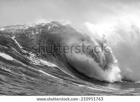 Picture of Perfect Ocean Wave. Indian Ocean.