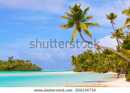 picture perfect beach at cook islands - stock photo