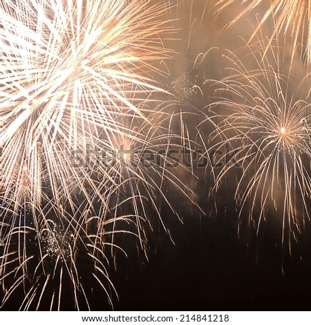 pictures of fireworks in the night sky - stock photo