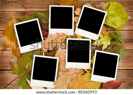 pictures with autumn leaves on a wooden background - stock photo