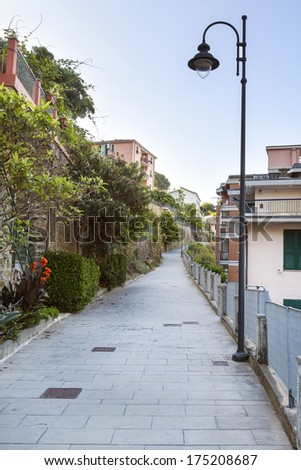picturesque alley view in cinque terre town