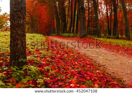 Picturesque autumn landscape view of autumn park with fallen autumn leaves, soft filter applied -beautiful autumn landscape in cloudy weather with yellowed autumn trees along lonely autumn alley - stock photo