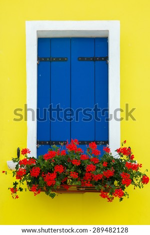 Picturesque blue window with shutters and flowers on yellow wall of houses on the famous island Burano, Venice, Italy - stock photo