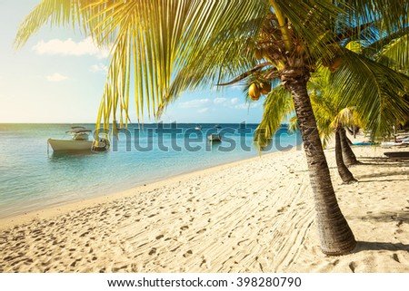 Picturesque fishing boats parked in the clear ocean on a background of palm trees and beautiful clouds. Indian Ocean, Mauritius island - stock photo