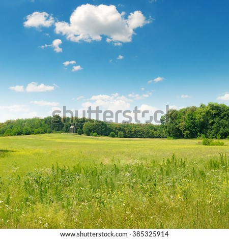 picturesque green field and blue sky - stock photo