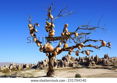Picturesque landscape with jugs on a tree, Cappadocia in Turkey. - stock photo