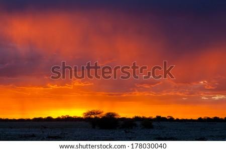 Picturesque scene of Etosha national park over sunset, Namibia - stock photo