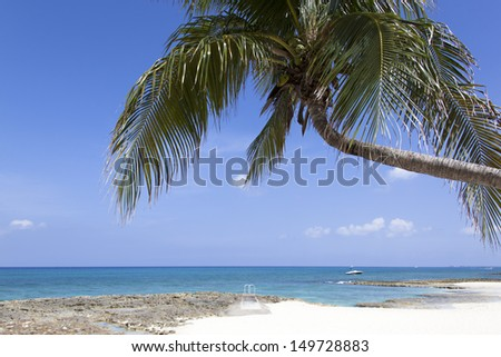 Picturesque Seven Mile Beach on Grand Cayman island (Cayman Islands).