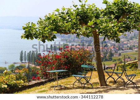 Picturesque terrace with view on vineyards near Lake Geneva, Switzerland - stock photo