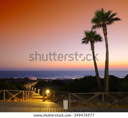 Picturesque view of seascape in the evening. Nobody, sunset. Palm trees