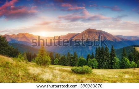 Picturesque view of the mountains that glow under sunlight. Dramatic morning  scene. Location place Carpathian national park, Ukraine, Europe. Artistic picture. Beauty world. Warm toning effect. - stock photo