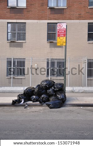 Pidgeon looking at Pile of Trash Black Plastic Bags curbside in New York - stock photo